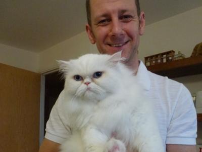 Cat-Grooming-Acton-Lulu