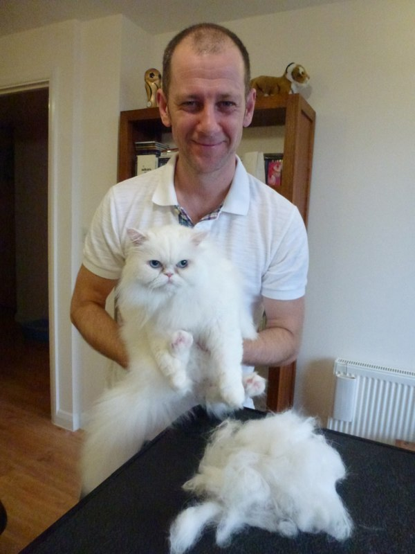 The end result..A very happy client and a very soft and fresh kitty.