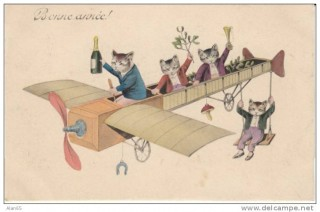 cats on a plane