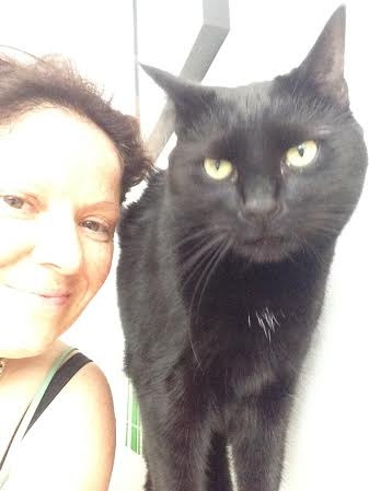 london notting hill holland park cat sitter
