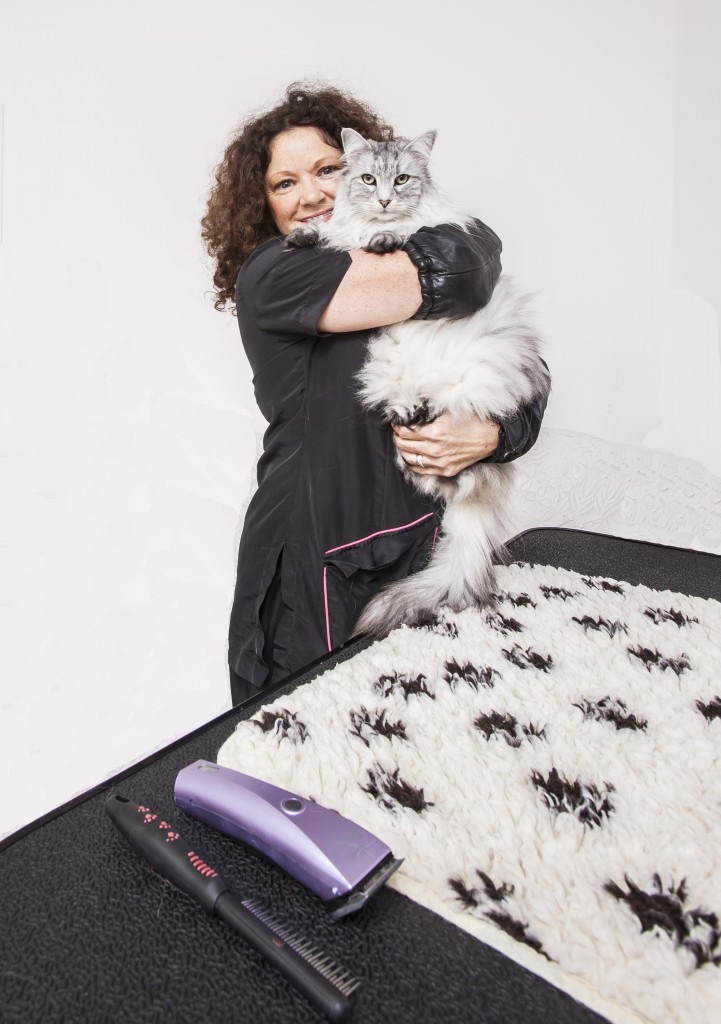 Cat Behaviourist - Mobile Cat Groomer - Cat Expert UK