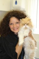 professional cat groomer South, East, West, North London