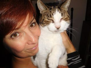 cat nail clipping home service London