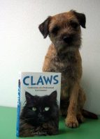 DOG WITH CLAWS. CONFESSIONS OF A CAT GROOMER